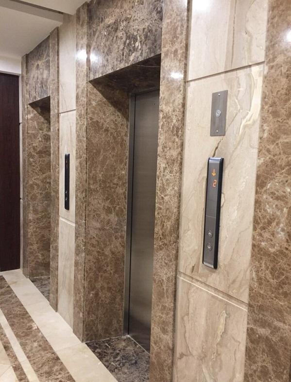 đá tự nhiên marble thang máy